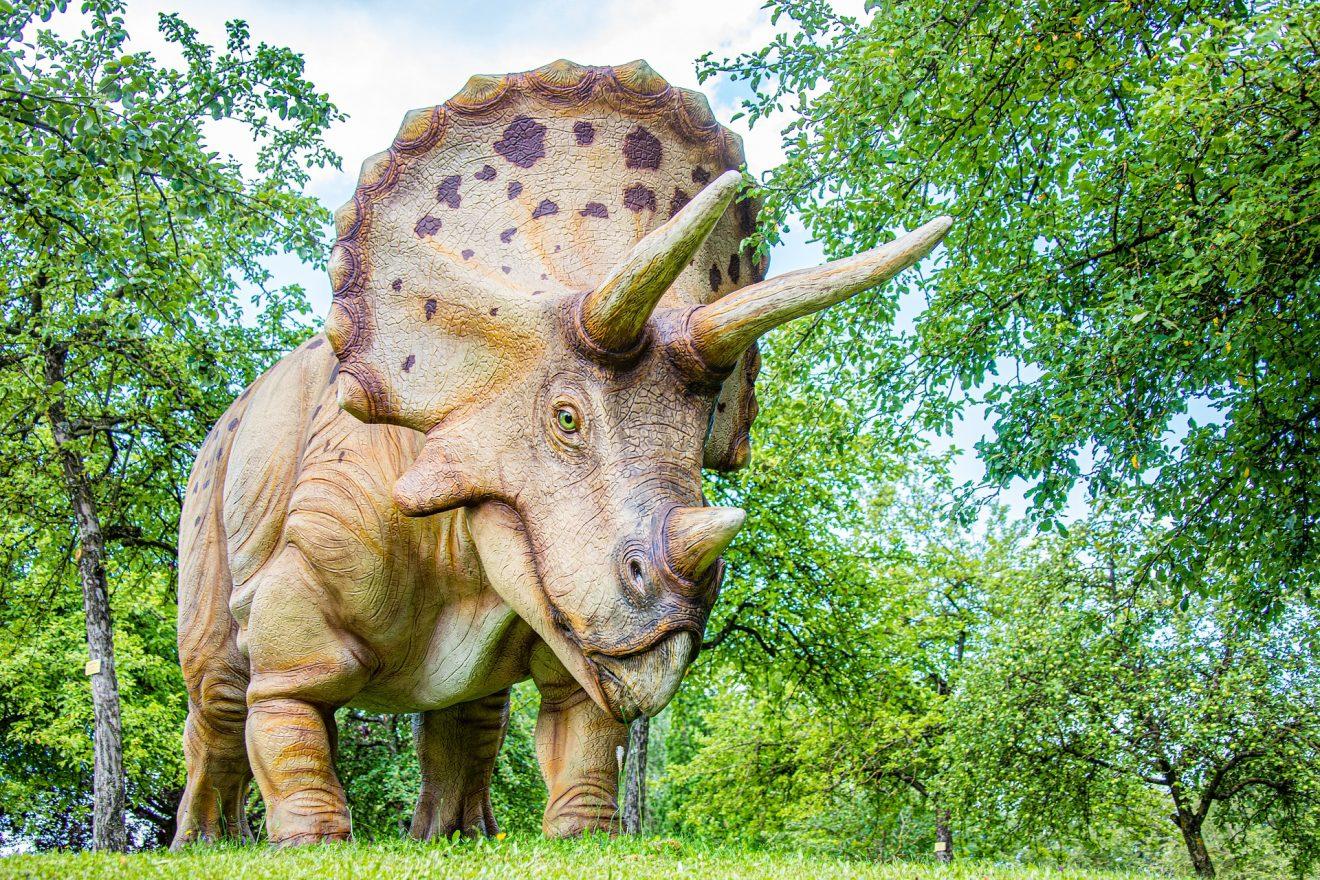 dinosaur-5414593_1920