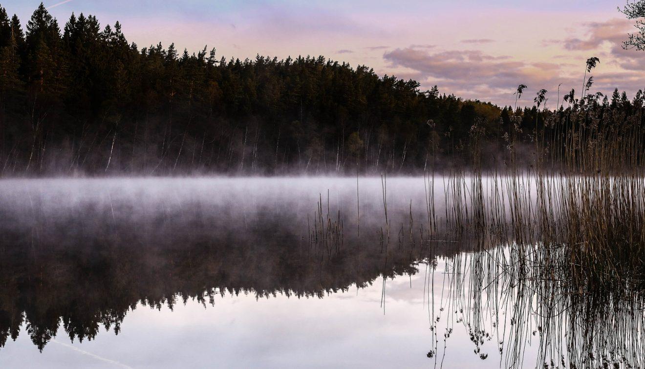lake-601207_1920