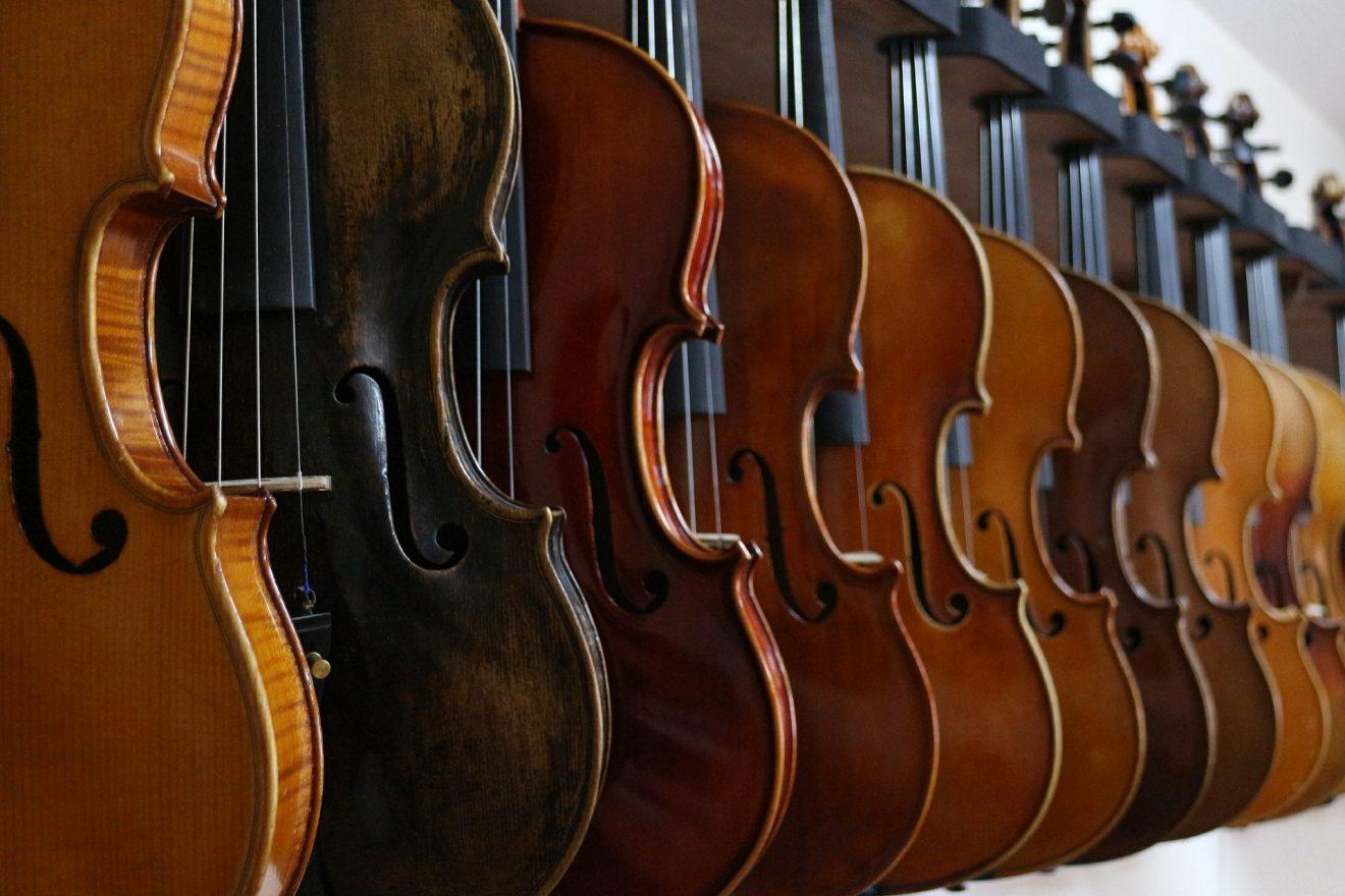 violin-516023_1920
