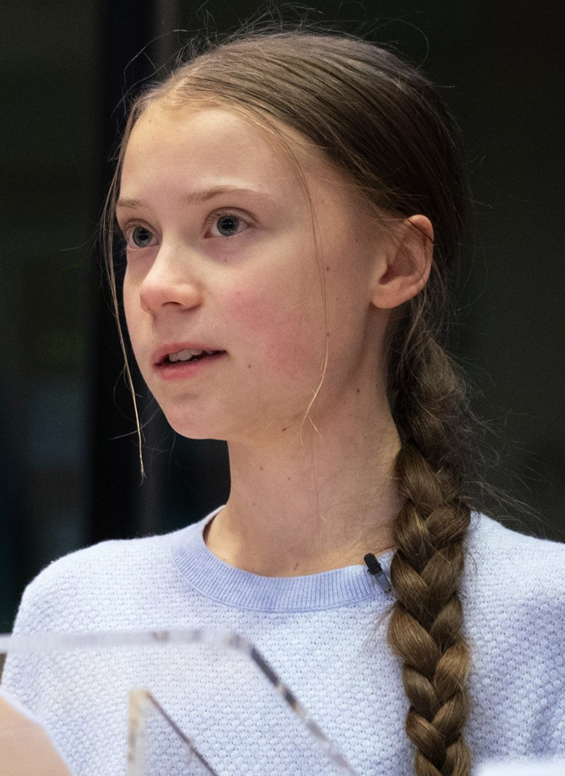 Greta_Thunberg_urges_MEPs_to_show_climate_leadership_(49618310531)_(cropped)