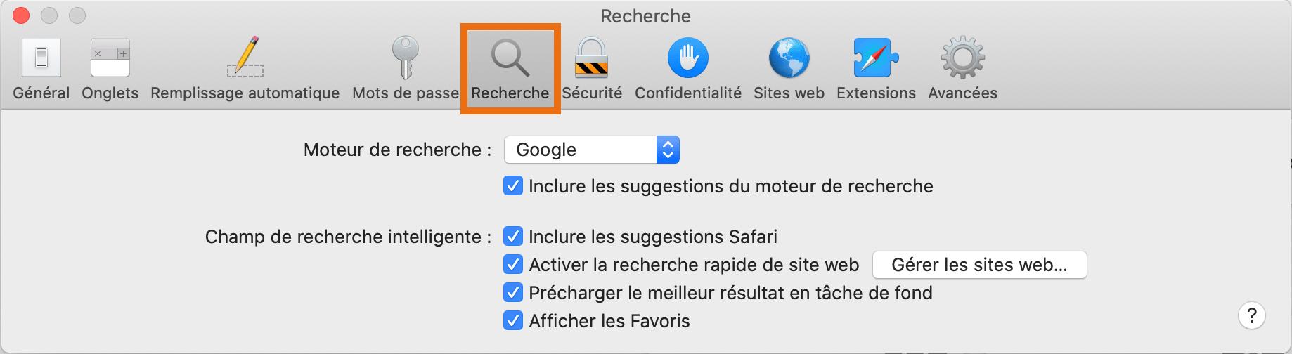 Safari paramètres recherche 2