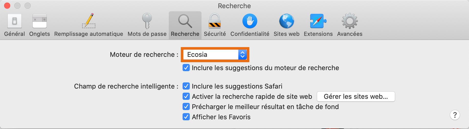 Safari paramètres moteur 4