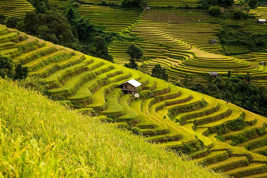 Landscape-Vietnam-by-Rehahn-22